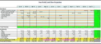 Nonprofit Budgeting Not For Profit Budget Template Ulive Me