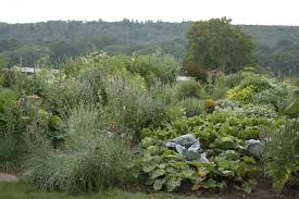 Kitchen Gardens Organic Vegetable Gardening New England Habitat Gardening Blog