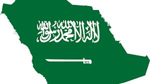 لماذا سميت السعودية بهذا الاسم؟... فيديو - Sputnik Arabic