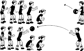 Реферат Педагогические условия обучения младших школьников  Педагогические условия обучения младших школьников элементам игры в баскетбол