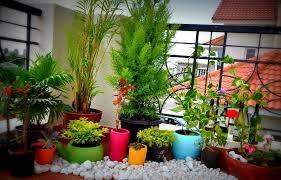 balcony gardens. best small balcony garden ideas home interior design gardens