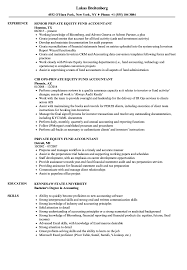 Download Private Equity Fund Accountant Resume Sample as Image file