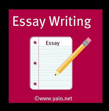 essays on animals my essay on animal testing