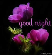 Best Good Night Wallpaper Download Good Night Images