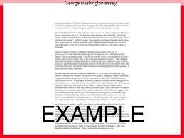 literature essay review definition pdf