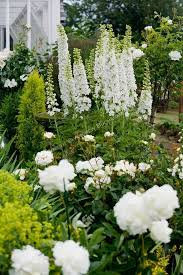 Small Picture 336 best Beautiful White Gardens images on Pinterest White
