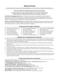 Resume Template Splendid Vice President For Marketing And