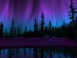 Purple Northern Lights Background Purple Northern Lights Wallpaper Northern Lights Night