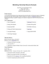 Internship Resume Examples Perfect Resume