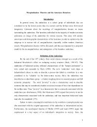 marginalization final essay