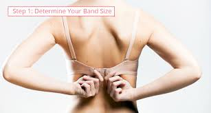 Goddess Bras Size Chart The Ultimate Guide On How To Measure Bra Size At Home And