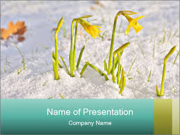 Spring Powerpoint Bunch Of Yellow Spring Powerpoint Template Infographics Slides