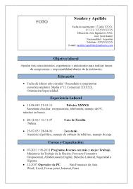 Modelo De Curriculum Vitae Resume Template