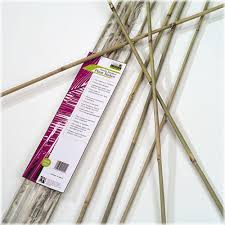 bamboo garden stakes. By Garden Stakes Home Depot Bamboo 17 Best Images About Supports