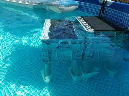 2016 diy swimming pool dog ramp dog
