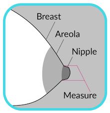 Breastshield Sizing Guide