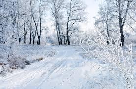 Image result for картинка декабрь снег