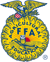 Ffa Logo Embroidery Design Pin By Vincenzo Santangelo On Ffa Ffa Emblem Ffa Outdoor