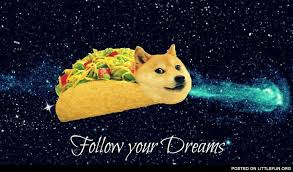 doge taco follow your dreams.  Your Remember Shibes Always Follow Your Dreams TO THE MOON And Doge Taco Follow Your Dreams C