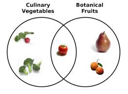 a fruit and a vegetable