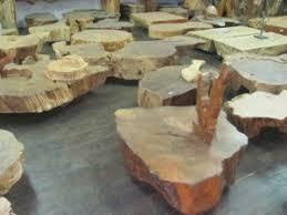 A mesa de centro rústica é uma das opções mais versáteis e que podem encaixar em qualquer ambiente. Mesa De Tronco E Raiz De Arvore Criadas Pela Natureza