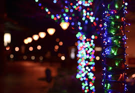 Lights Before Christmas Saluda Shoals The Best Places To See Holiday Lights In Columbia Colatoday