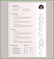 Free Resume Ideas Free Ai Resume Templates Awesome Cv Templates Adobe