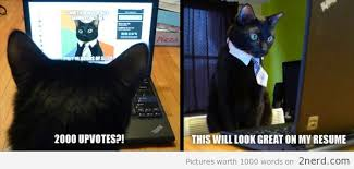 Cat Resume