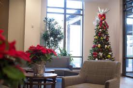 office holiday decorations. Office Holiday Decor. Decorating Decor Decorations D