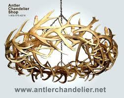 modern antler chandelier antler chandelier antler lamp antler chandelier chandelier kit designs modern images modern white