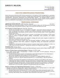 My Perfect Resume Free Enchanting Luxury 40 Professional Profile Resume or Free Sample Resume and My