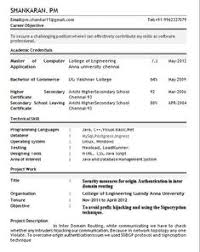 School Admission Form Format In Ms Word Resume Format Pdf For Freshers Latest Professional Resume Formats In