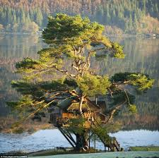 Kinlochlaich Treehouse Charming Scottish Highlands EcoretreatTreehouse Scotland