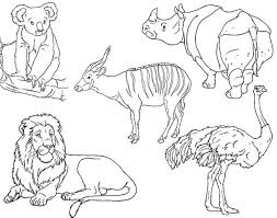 Small Picture Drawing Safari Animals Jungle Vector Hand Drawn Style African