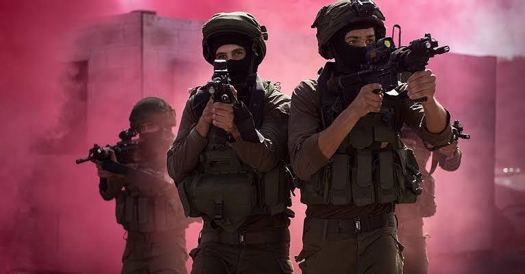 IDF Commando Brigade Soldier Minecraft Skin