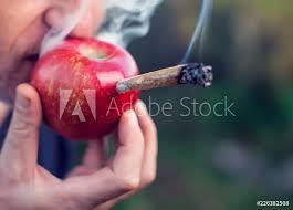 Fotografie Obraz A Man Smoking Marijuana Joint Through An Apple