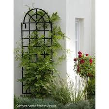 arch top wall trellis orangerie classic garden elements