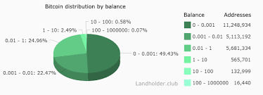 Bitcoin Wallet Chart Bitcoin Distribution By Balance Bitcoin
