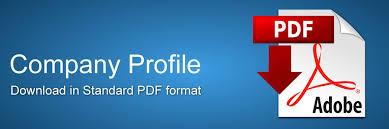 Company Profile - Lasani Engineering