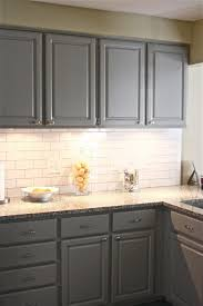Gray Stained Kitchen Cabinets Grand Grey Stained Kitchen Cabinets Home Decorating Ideas And