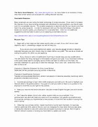 Career Overview Resume Examples Summary Of Qualifications Resume Example Fresh Career Overview 13
