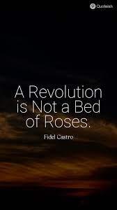25+ Fidel Castro Quotes
