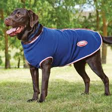 weatherbeeta polar fleece with zip dog rug navy red white 70cm 28 inch at goyt mill saddlery goytmill com