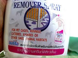 image led remove cat urine from wood floors step 2