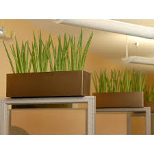 office planter. beautiful office office plant service in utah to planter
