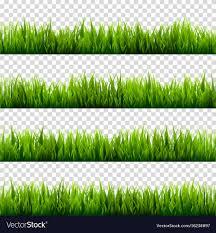 grass transparent background. Grass Transparent Background