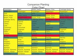 Plant Compatibility Vegetable Gardens Chart Impressive Garden Planting Guide 9 Vegetable Garden