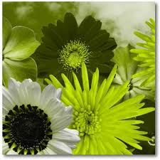 lime green flowers on canvas modern
