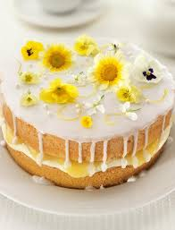 Lemon And Elderflower Drizzle Cake Sainsburys Magazine
