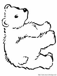 Colorare Orso Disegno Un Orso 4